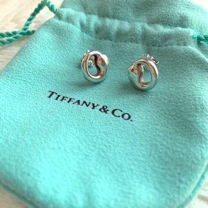 Tiffany & Co. Eternal Circle Earrings